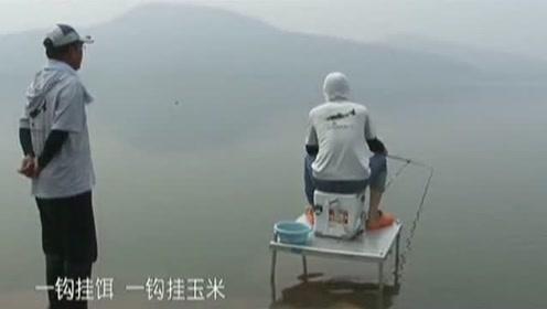 开竿没多久,师兄就通过打截口钓获了一尾5斤多的草鱼