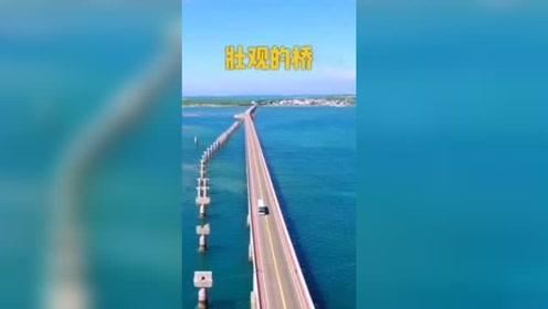好壮观的桥,太美了