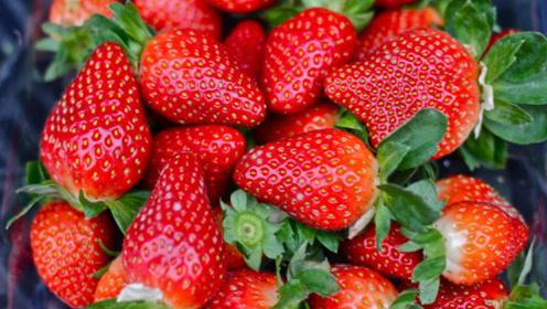 这些食物都是降血糖的专家,预防糖尿病并发症