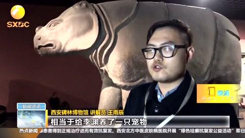 """碑林里的国宝——唐高祖的""""超级宠物"""""""