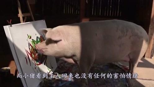 """一头猪的传奇""""猪生"""",学画画改变命运,一张作品拍出卖27000!"""