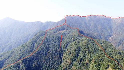 他们藏在原始深山,被经过的无人机拍到,为了一穴宝地也是够拼的