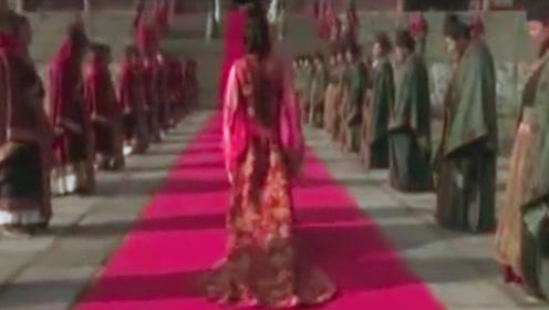 皇帝以为灰姑娘很丑,就派她去敌国和亲,抬头后才发现是绝色美女
