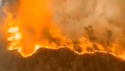 佛山高明山火犹如世界末日 上千人参与扑救并出动直升机