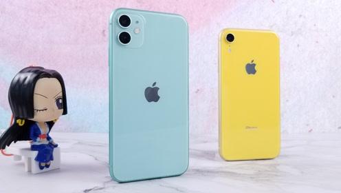 就跟没换手机似的?把苹果XR换成11的一个月体验!