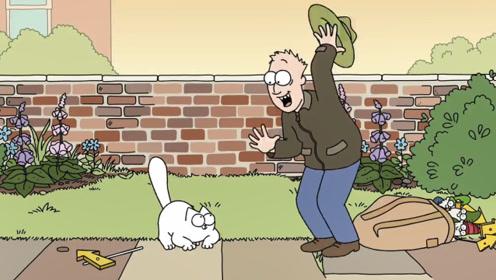 猫咪抛下主人离家出走,在外面流浪一圈后,才知道主人的好!