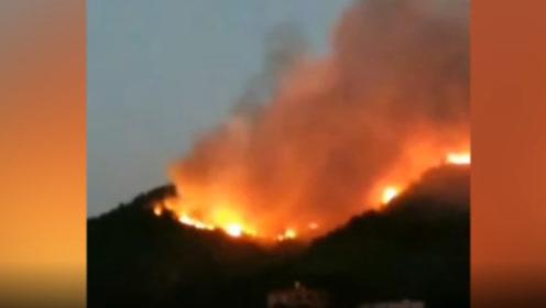 佛山高明突发山火,大火连烧一天一夜,集结千余人火速扑救