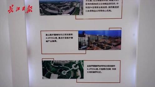 抓机遇 谋发展|武汉光谷这些园区真是未来之光!