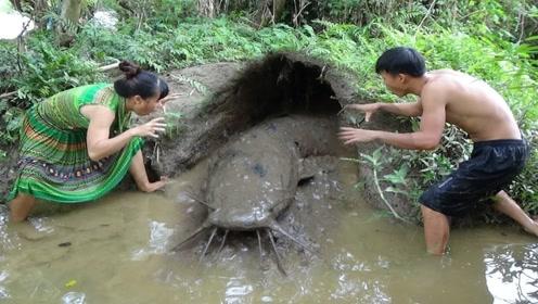 农村夫妻在河道旁发现奇怪洞穴,挖开一看,钻出一条大家伙!