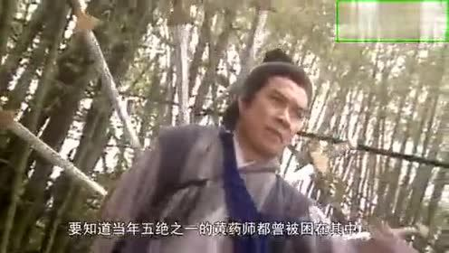 神雕侠侣:郭靖的武功那么高!却很少出手!这是为何?!