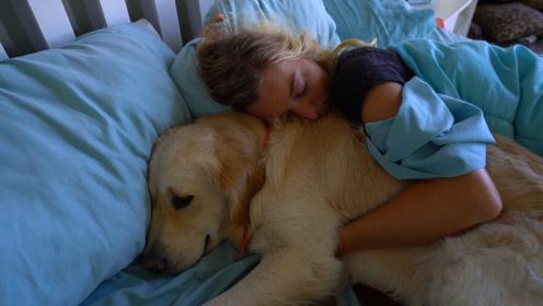 为啥一般单身独居的女孩,都爱养一条大型犬?专家:缺个男朋友!
