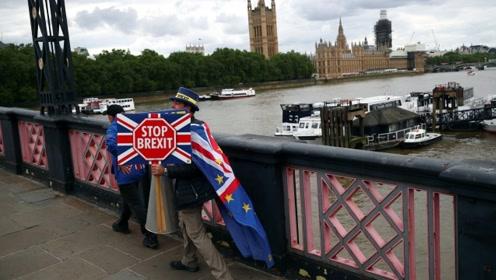 英国的反脱欧选民都去哪了?法媒:深陷内讧无法自拔
