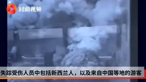 新西兰火山喷发当日旅游公司曾发警告,但旅行团并未取消行程