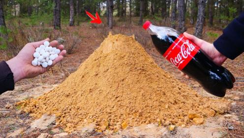 将可口可乐和薄荷糖,一起倒进沙堆会怎样?下一秒场面失控