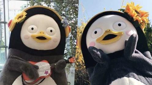 击败BTS?卡通企鹅被评韩娱圈年度人物:厚脸皮又敢顶撞上司
