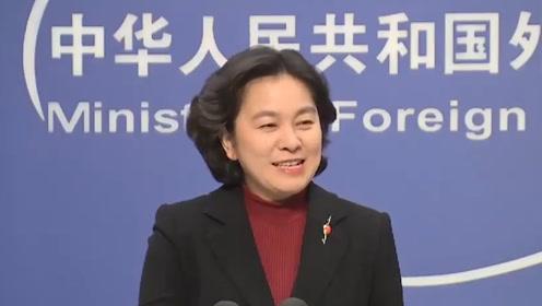 中国假警车在澳骚扰维吾尔人?华春莹笑了2次:黑中国请用点脑子