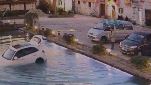 主人下车没熄火狗狗将车开进池塘里 车主回来愣在原地瞬间石化