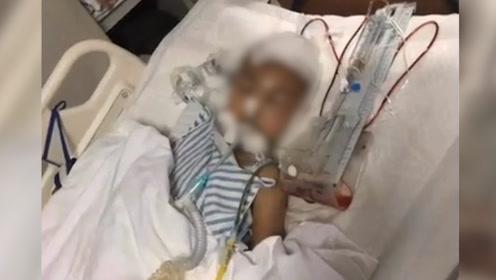 河南7岁男童武校死亡尸检结果出炉,家属不认可申请重新鉴定