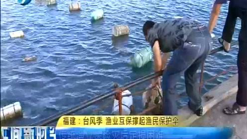 """福建海产养殖出""""台风保险""""  养殖平台再添保障"""
