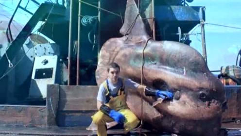 俄罗斯渔民手抓鬼鲨 你感受到来自深海的恐惧了吗?
