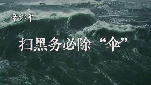 """辛识平:扫黑务必除""""伞"""""""