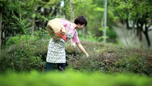 创客女孩-李凤娟