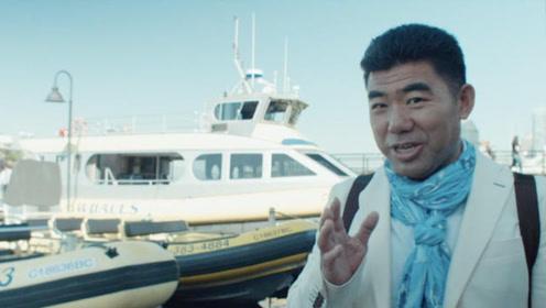 查理温哥华观鲸 气泡竟是座头鲸捕食利器?