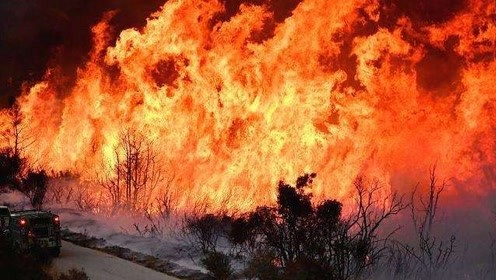 加州大火烧了半个多月还未扑灭 现场惨如人间炼狱