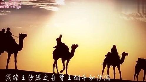 一首最近超流行的老歌!沙漠骆驼送给大家!