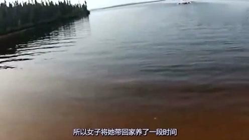 女子在河边放生小鱼,刚放进水里意外就发生,不知所措!