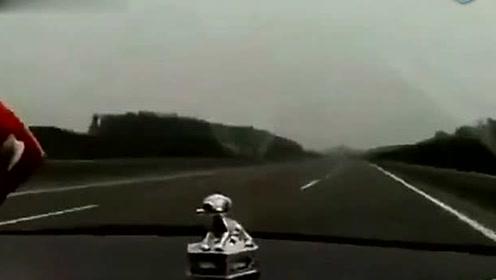 女司机高速上逆行,还骂对向车不守规矩乱闪灯简直逆天了