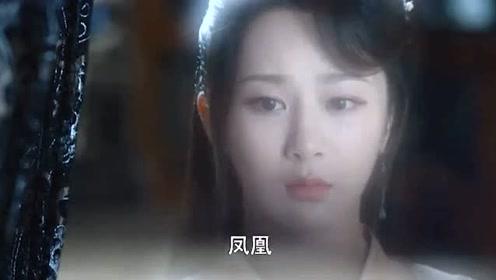《香蜜沉沉烬如霜》锦觅:凤凰,你果然恨透了我!