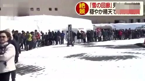 在雪墙下开车,日本这条公路两侧积雪高达16米