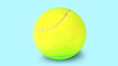 网球,不是绿色的吗!为什么大家都说是黄的?