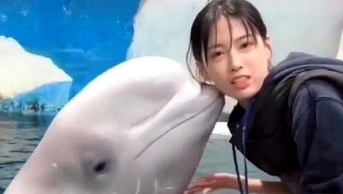 我第一次见这么胖的白鲸,小姐姐都拿它没办法,网友:美女真漂亮
