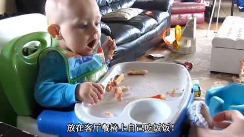 宝宝在餐椅上吃饭,爸妈笑坏了,小猫咪抢小宝宝食物吃