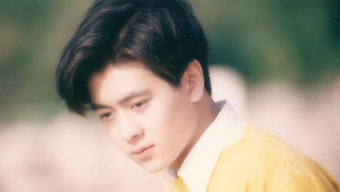 20年前公认最帅6张脸:林志颖上榜 刘德华排第二
