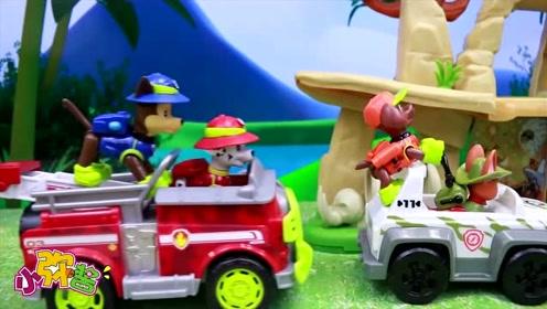 汪汪队在寻找被困的猴子 路上困难重重  但它们还是完成了任务