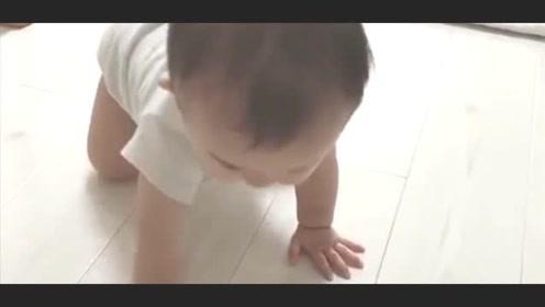 肉嘟嘟的小宝宝慢慢地爬过来,接下来抬起头的样子萌翻了!