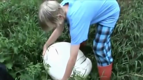 """小男孩在野外玩耍时,意外发现""""白馒头"""",带回家切开一看赚大了"""