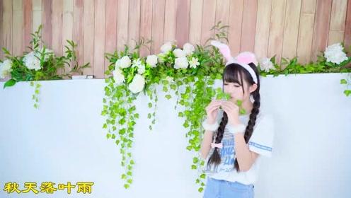 小姐姐扮演兔子,清纯靓丽,可爱卖萌,软化心灵