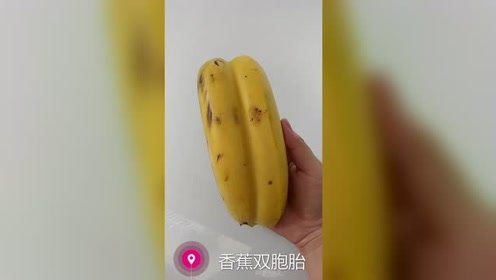 见过香蕉双胞胎吗?这辈子要吃多少香蕉,才能遇到它!