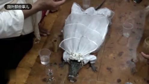 男子娶鳄鱼为妻 当众和其接吻