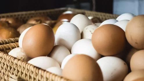 鸡蛋红皮好还是白皮好?别再被朋友圈骗了