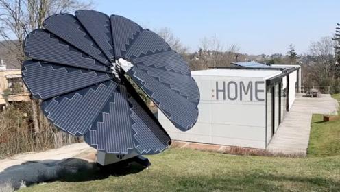 """国外小伙发明""""太阳花"""",每年发电6千度,以后不用交电费了!"""