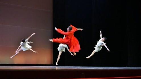 看完金星的舞姿,再看看杨丽萍的,网友:真心不是一个档次!