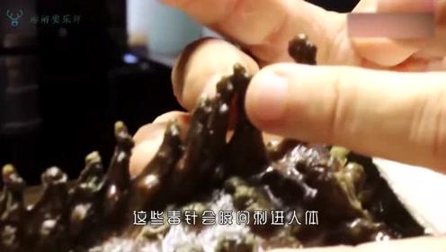 世界上最毒的鱼,男子用泡沫做实验模拟踩到,看着就吓人