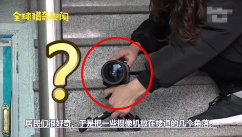 小区鞋子经常离奇失踪,好奇居民装上摄像头才发现真相:好惊讶!