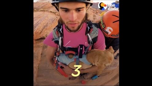 国外小哥偶然在荒漠救了一只狗狗,从此多了个一起冒险的好伙伴
