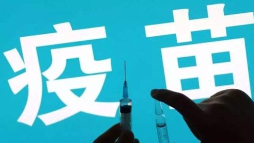 百白破等疫苗全国性缺货调查:上半年整体供应减少17%